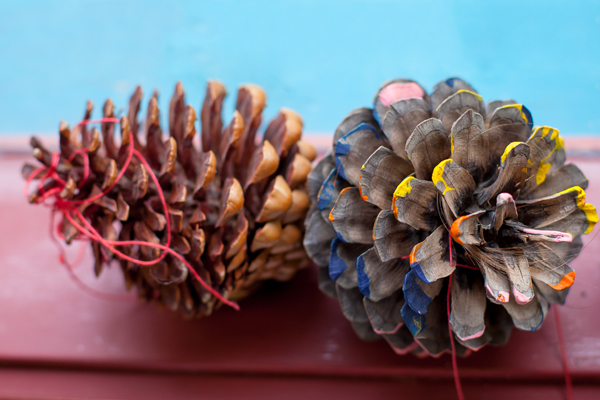 pinecones-kindergarten-photography-melbourne.jpg